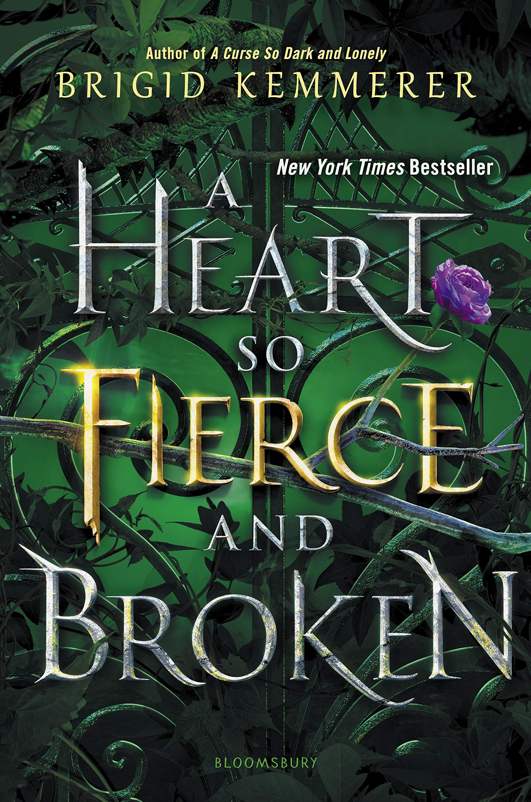 Image result for brigid kemmerer a heart so fierce and broken""