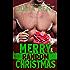 Merry Random Christmas (Random Series #8)