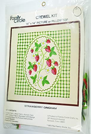 Amazon Strawberry Gingham Vintage Crewel Embroidery Kit By