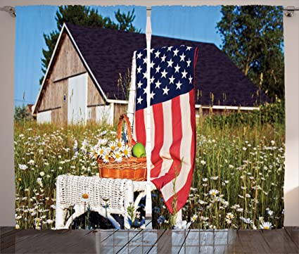 Ambesonne Americana Decor Collection, Green Apples and Daisies on Chair with USA Flag Bouquet Countryside