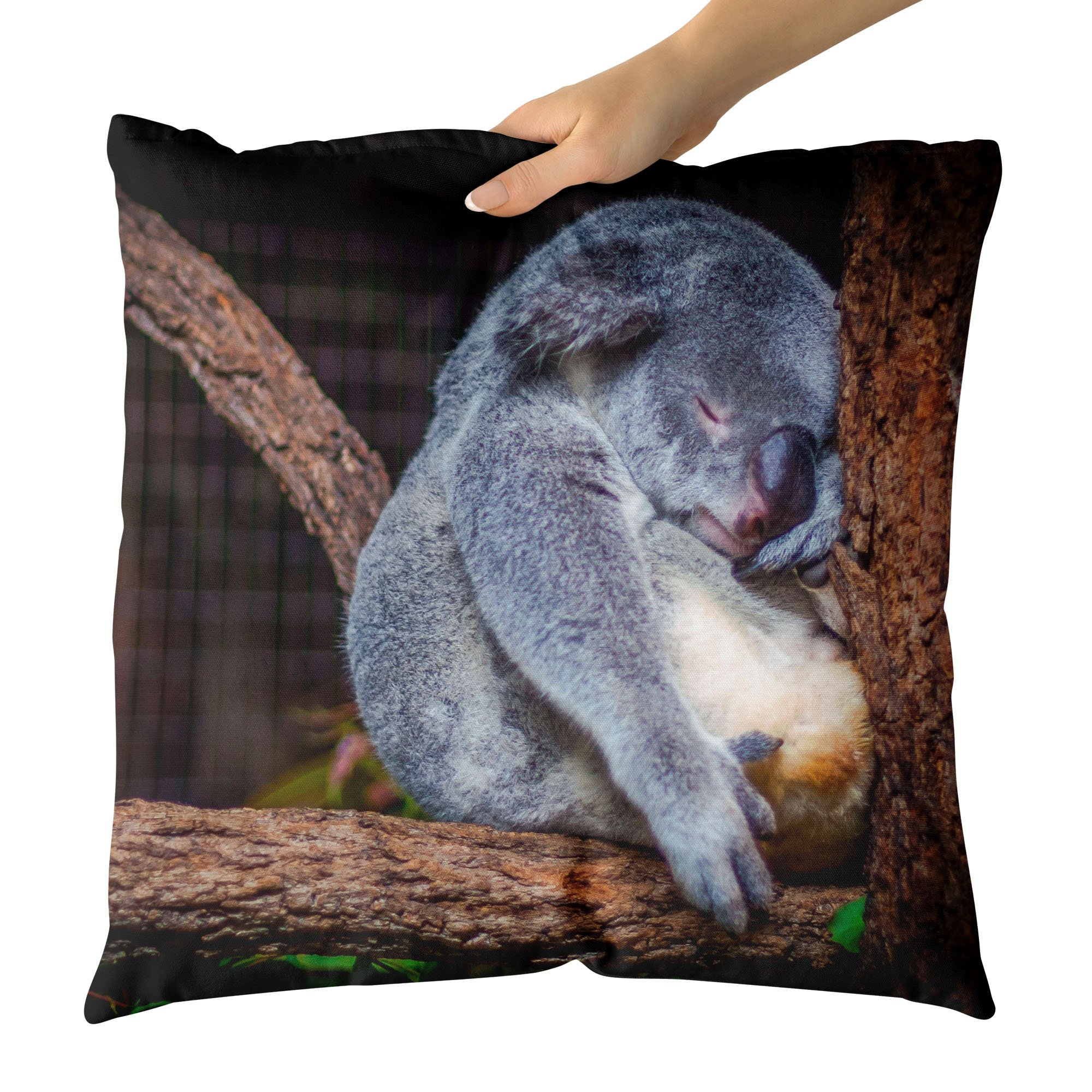 Westlake Art - Everyday Koala - Decorative Throw Pillow Cushion - Picture Photography Artwork Home Decor Living Room - 26x26 Inch by Westlake Art