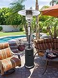 AZ Patio HLDS01-WCG Hammered Heater
