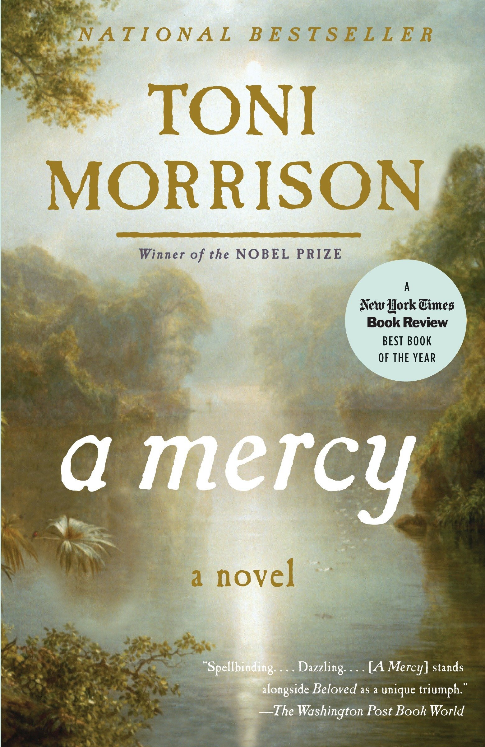 A Mercy (Vintage International): Amazon.es: Toni Morrison: Libros en idiomas extranjeros