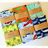 Lunchbox Napkins, 12x12 Cotton Cloth Single Ply Napkins for Kids, Set of 5