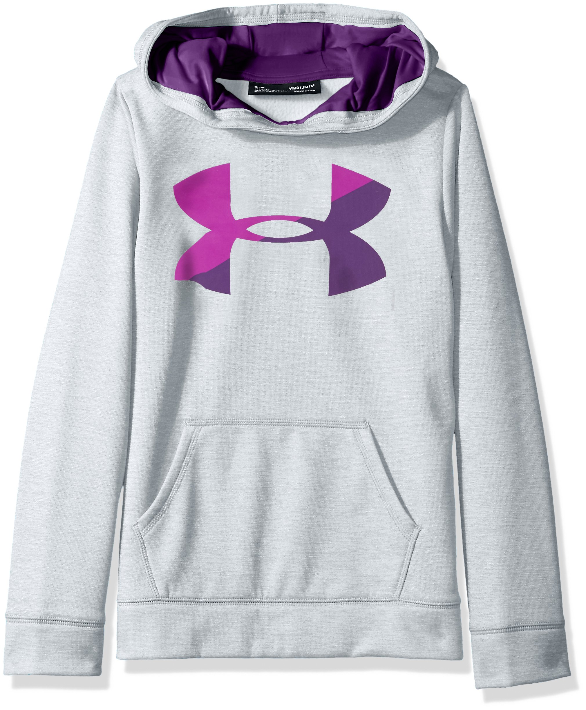 Under Armour Girls' Armour Fleece Big Logo Novelty Hoodie,Overcast Gray /Indulge, Youth Medium by Under Armour
