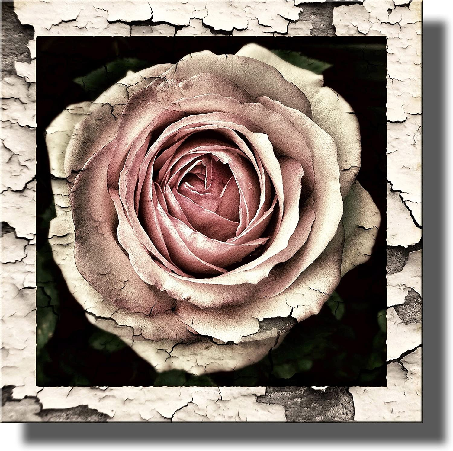 """Vintage Rose Flower Picture on Stretched Canvas Wall Art Décor, Ready to Hang! (12"""" x 12"""")"""