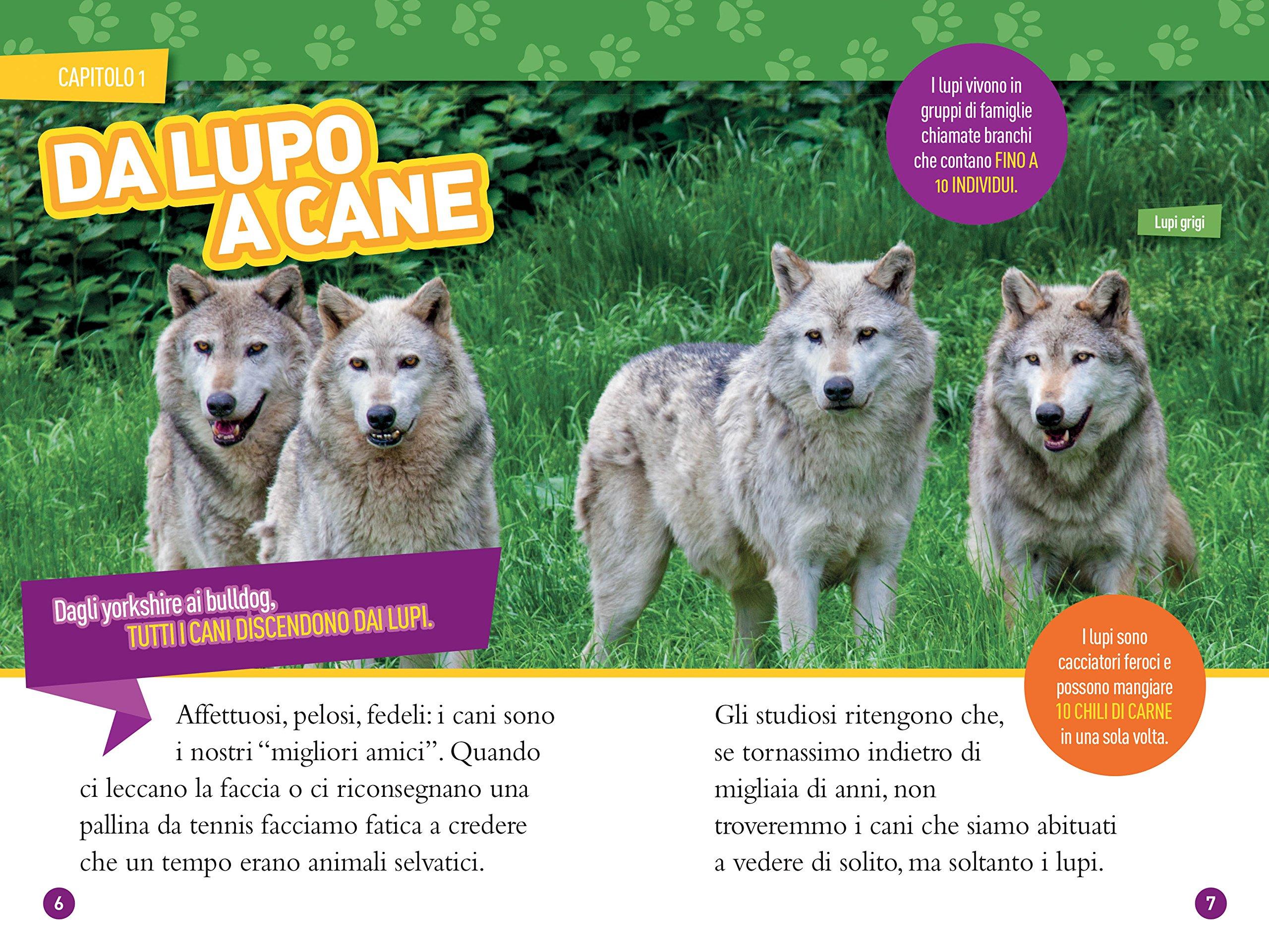 NATIONAL Geographic Kids animali selvatici-Wolf