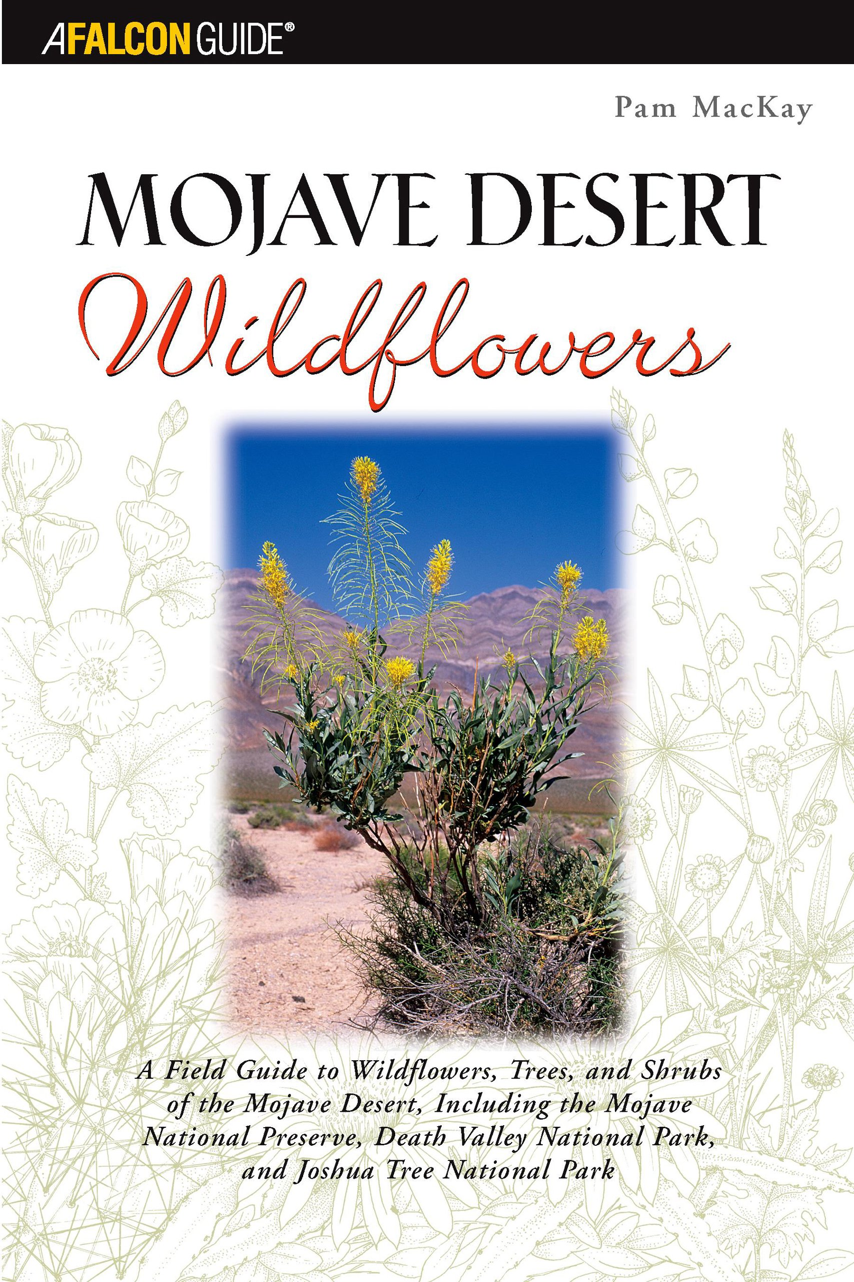 Mojave Desert Wildflowers A Field Guide To Wildflowers Trees