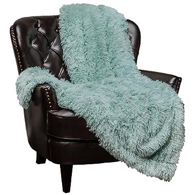 Chanasya Super Soft Shaggy Longfur Throw Blanket | Snuggly Fuzzy Faux Fur Lightweight Warm Elegant Cozy Plush Sherpa Microfiber Blanket | for Couch Bed Chair Photo Props - 50 x 65  - Aqua Turquoise