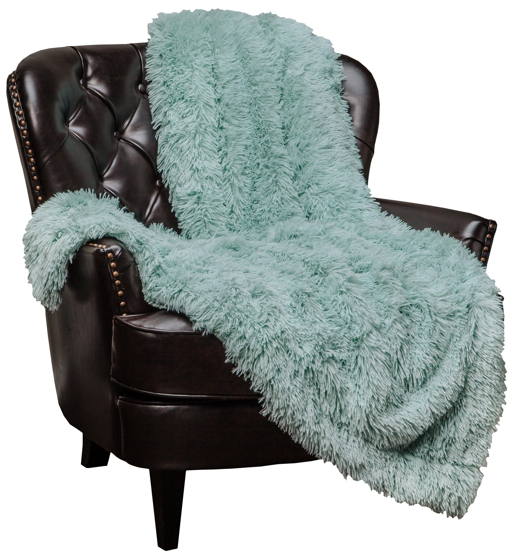 Chanasya Super Soft Shaggy Longfur Throw Blanket | Snuggly Fuzzy Faux Fur Lightweight Warm Elegant Cozy Plush Sherpa Microfiber Blanket | for Couch Bed Chair Photo Props - 60''x 70'' - Aqua Turquoise by Chanasya
