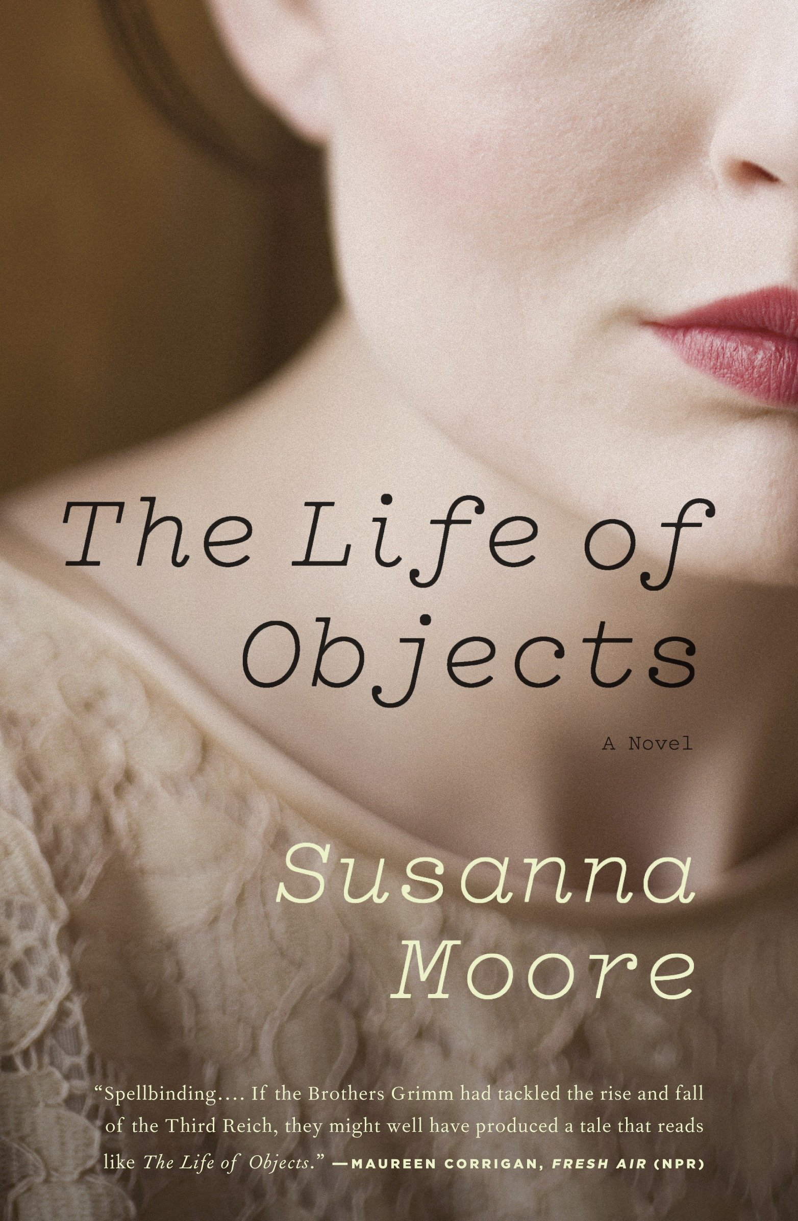 Read Online The Life of Objects pdf epub