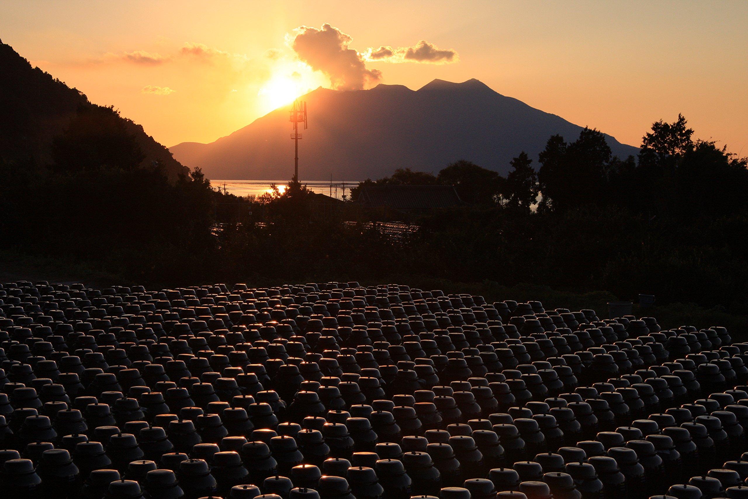 KAKUIDA Premium Brown Rice Black Vinegar Aged 10 years 33.8 Fl, Oz (1000 Ml) by Kakuida