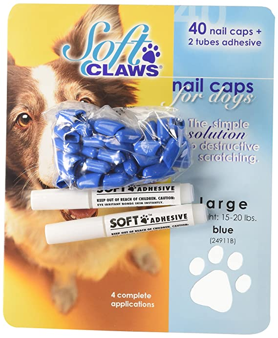 Amazon Com Soft Claws Dog And Cat Nail Caps Take Home Kit X