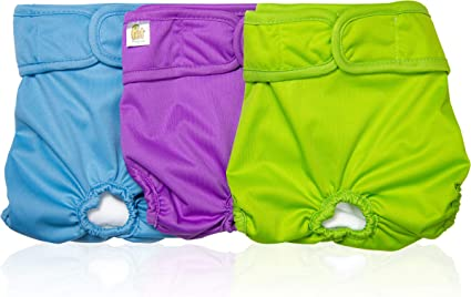 Highly Absorbent with Strong /& Flexible Velco Pet Magasin Reusable Washable Dog Diapers Pack of 3