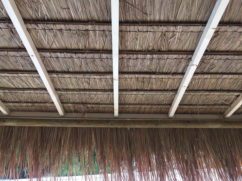 INVENTION GREEN Cenador Playa: Amazon.es: Jardín