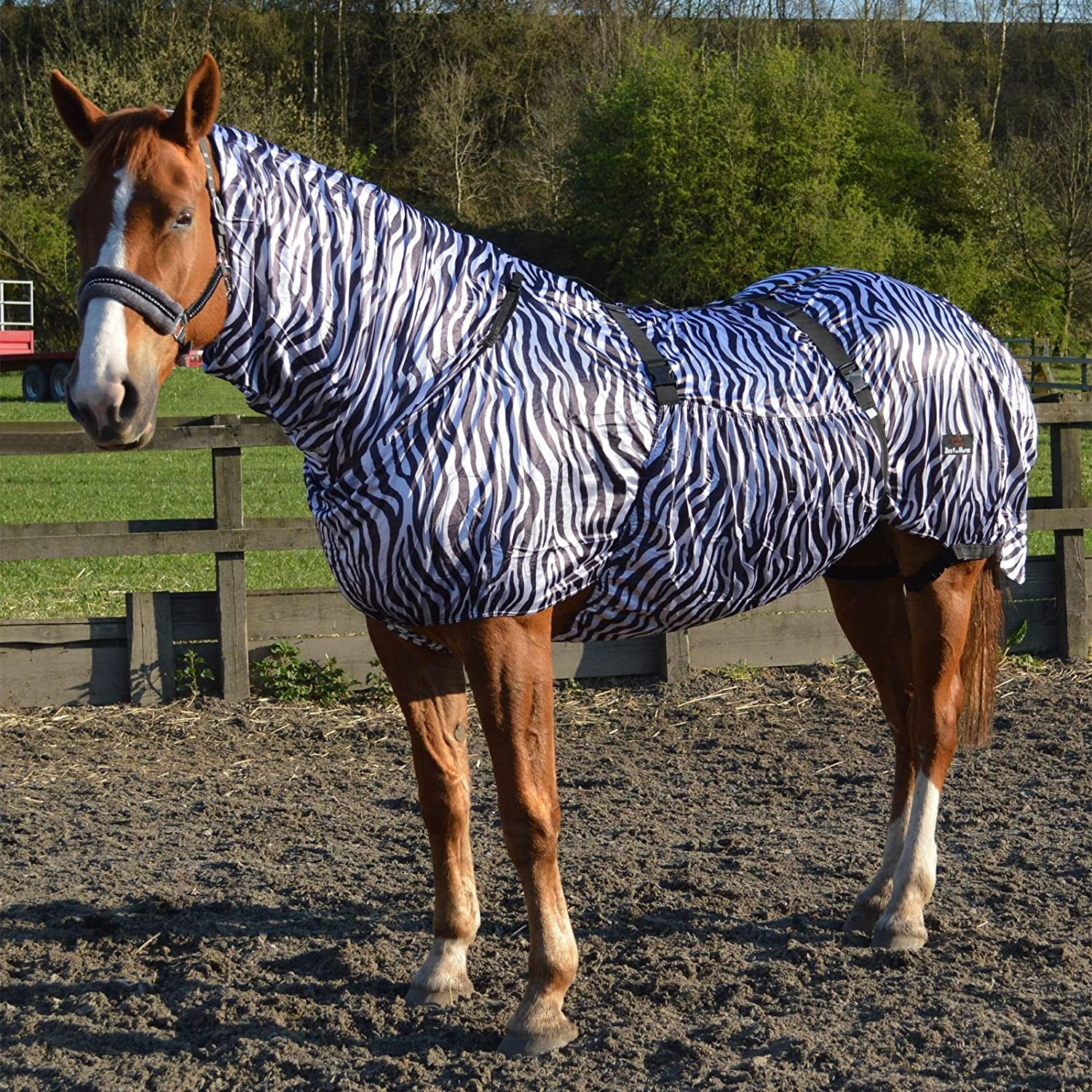 Pony Horse Riding Breathable Fly Protection Outdoor Eczema Combo Summer Blanket Rug Sheets