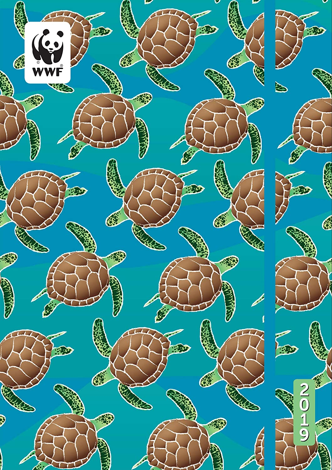 Date And Time Calendar August - December 2019 Amazon.: WWF Turtles Academic Planner Calendar 2019 Flexible