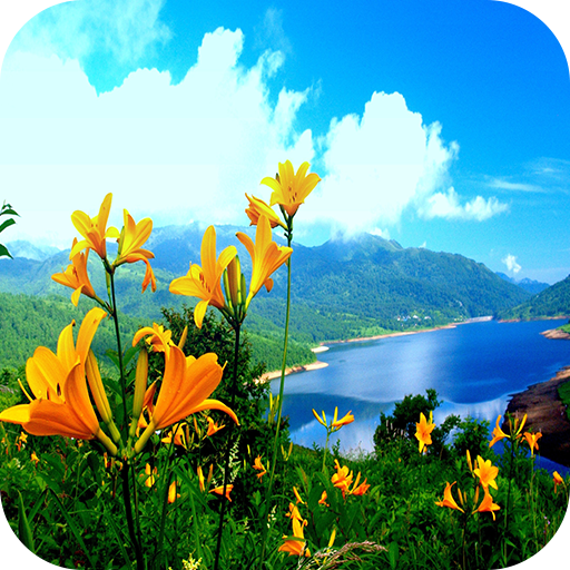Amazon Com Nature 4k Wallpaper Appstore For Android