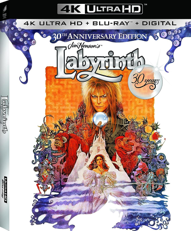 Image result for labyrinth 4k version