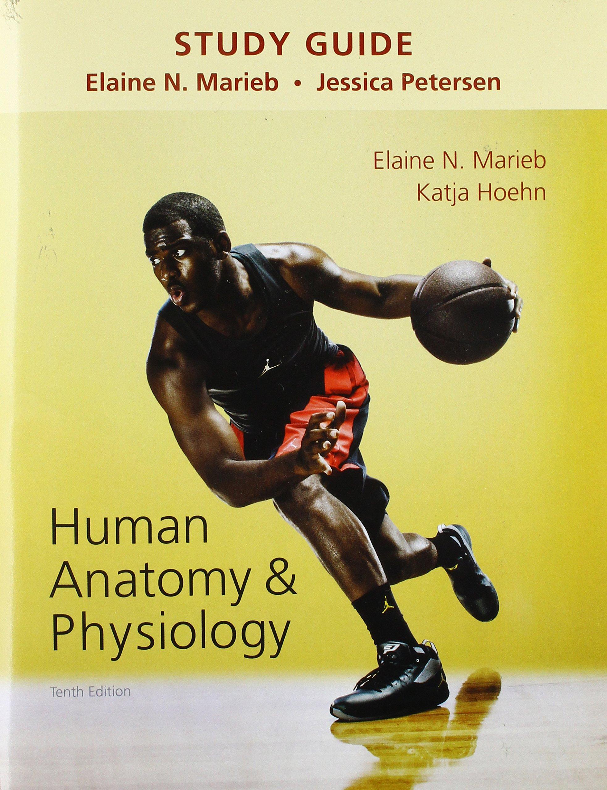 Study Guide for Human Anatomy & Physiology: Elaine N. Marieb, Katja ...