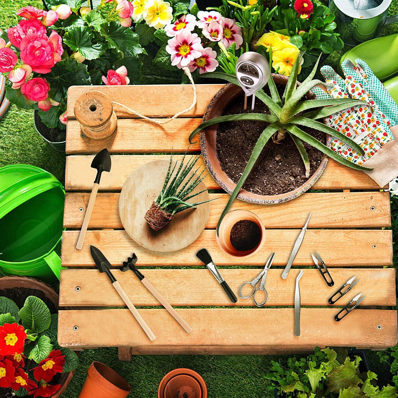 Bodentester Boden Messgerät mit 10 Teiligem Bonsai Werkzeug Set 3 in 1 Boden Feuchtigkeit Meter einschließlich Gartenschere Faltenschere