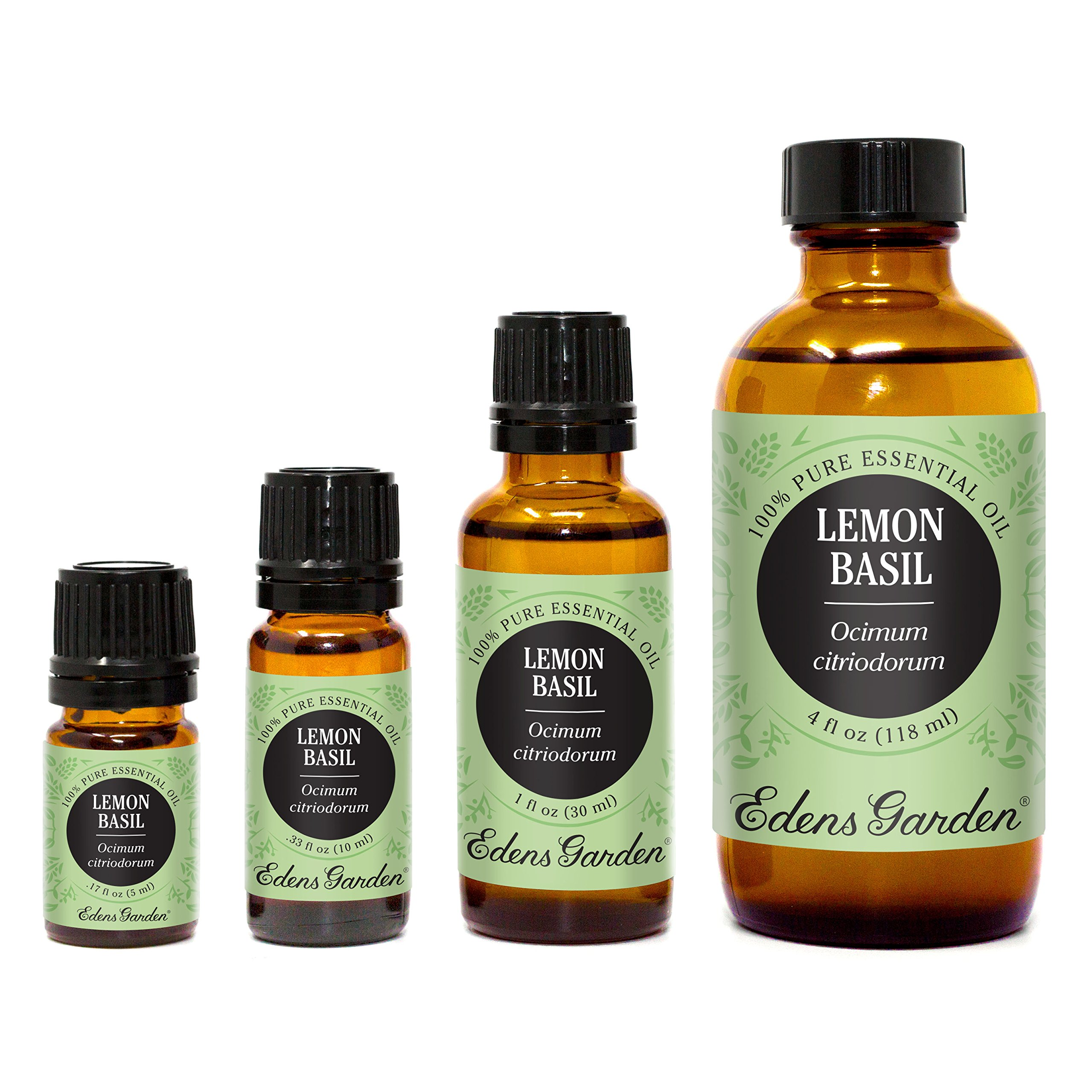 Edens Garden Lemon Basil 10 ml 100% Pure Undiluted Therapeutic Grade Essential Oil GC/MS Tested