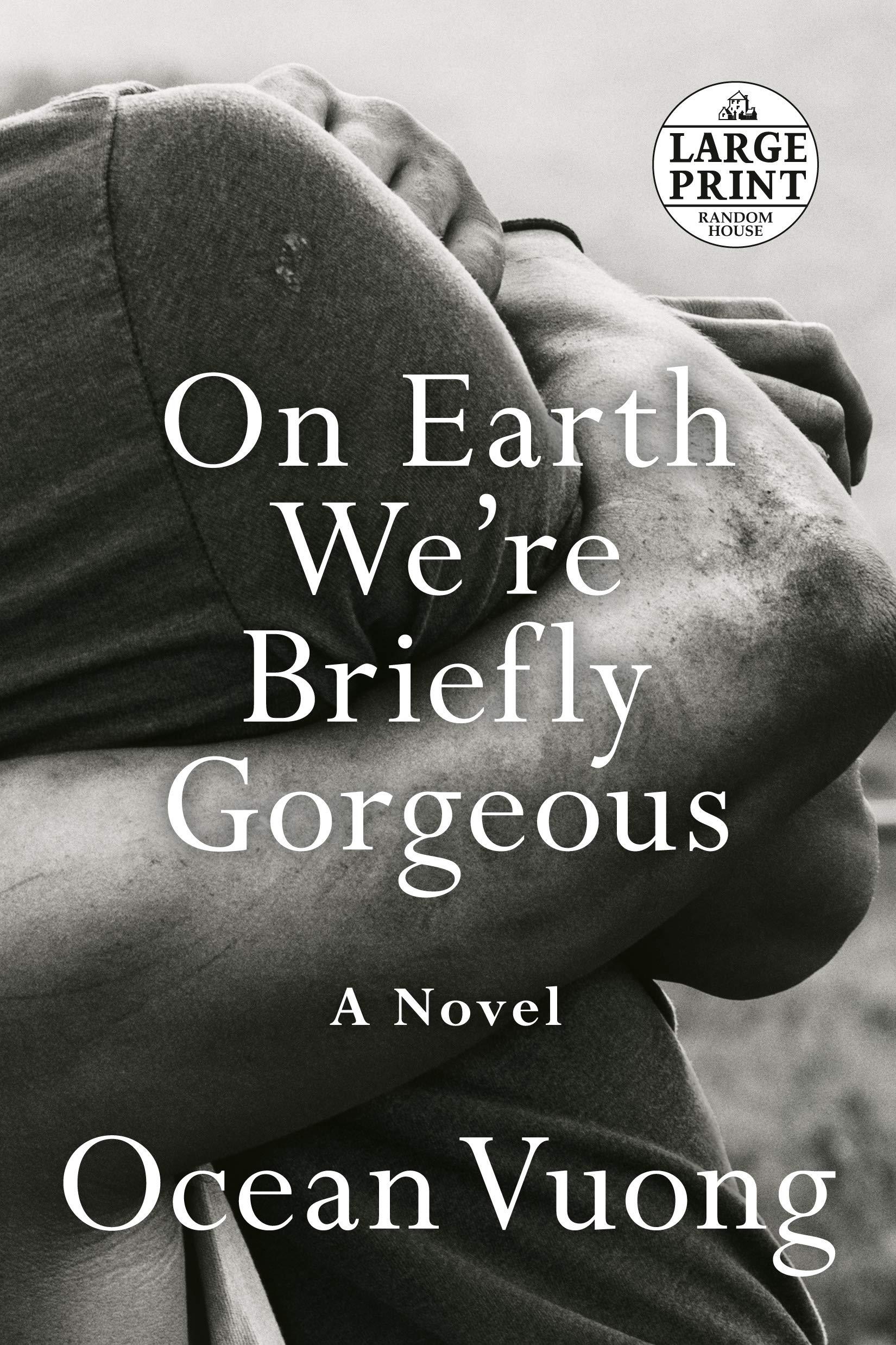 On Earth We're Briefly Gorgeous: A Novel (Random House Large Print) by Random House Large Print
