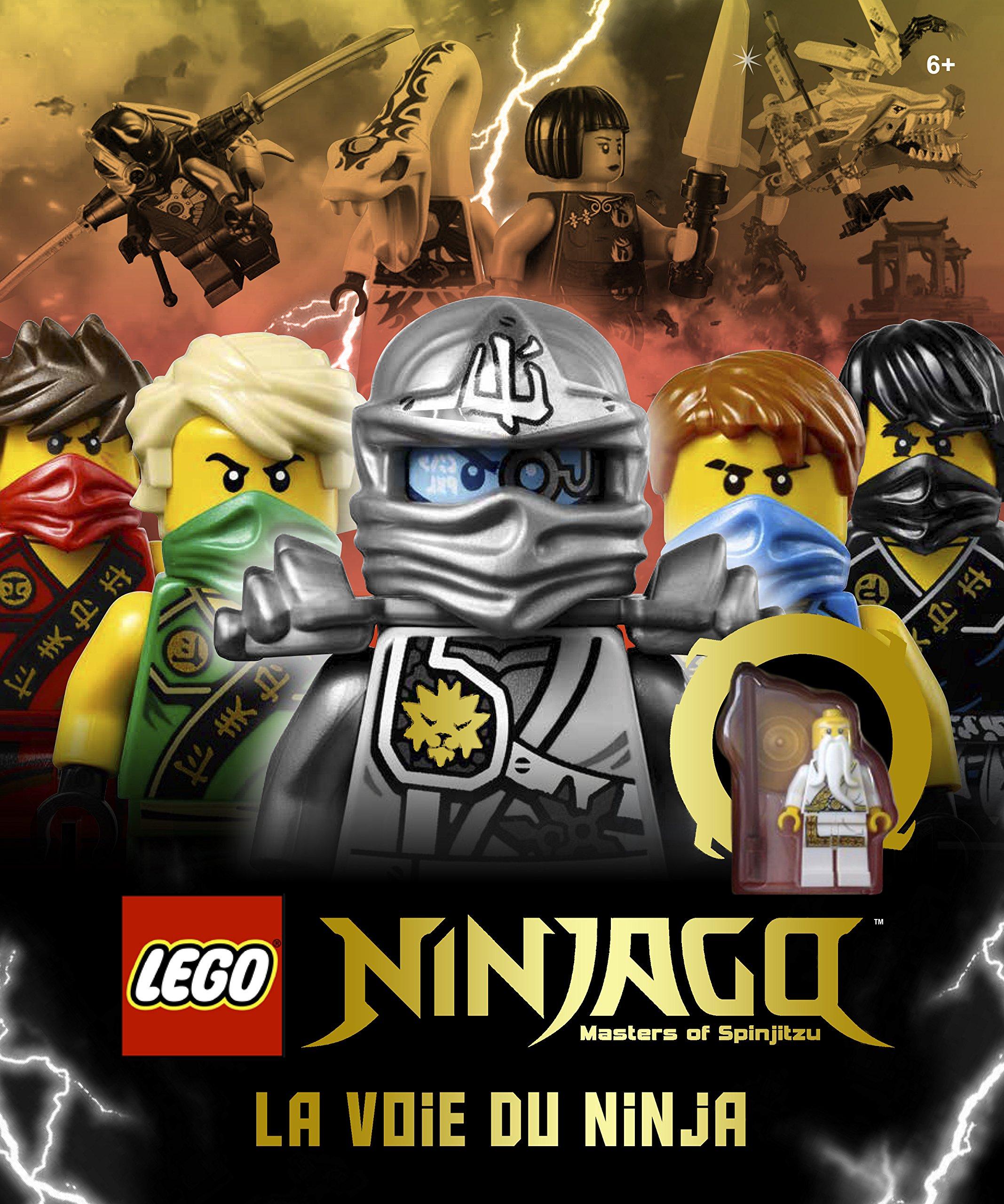 LEGO Ninjago, la voie du ninja: Amazon.es: Beth Landis ...