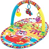 Playgro Play in The Park Activity Gym (Multicolor)