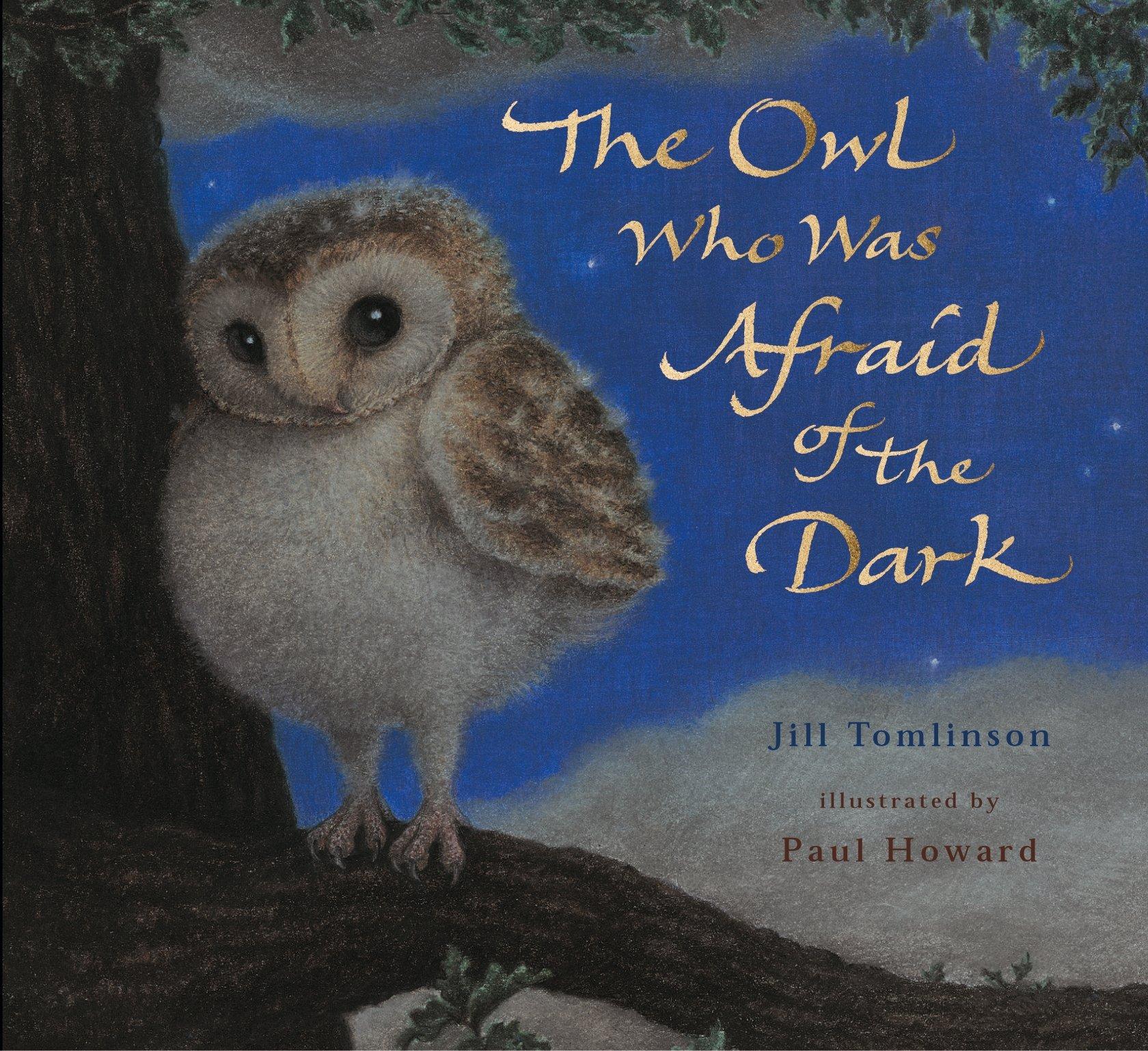 The Owl Who Was Afraid of the Dark: Amazon.co.uk: Tomlinson, Jill, Howard,  Paul: 9781405201773: Books