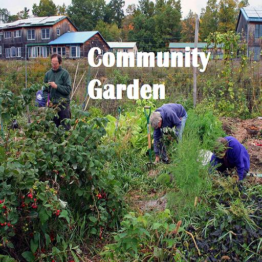 Community Garden: Amazon.es: Appstore para Android