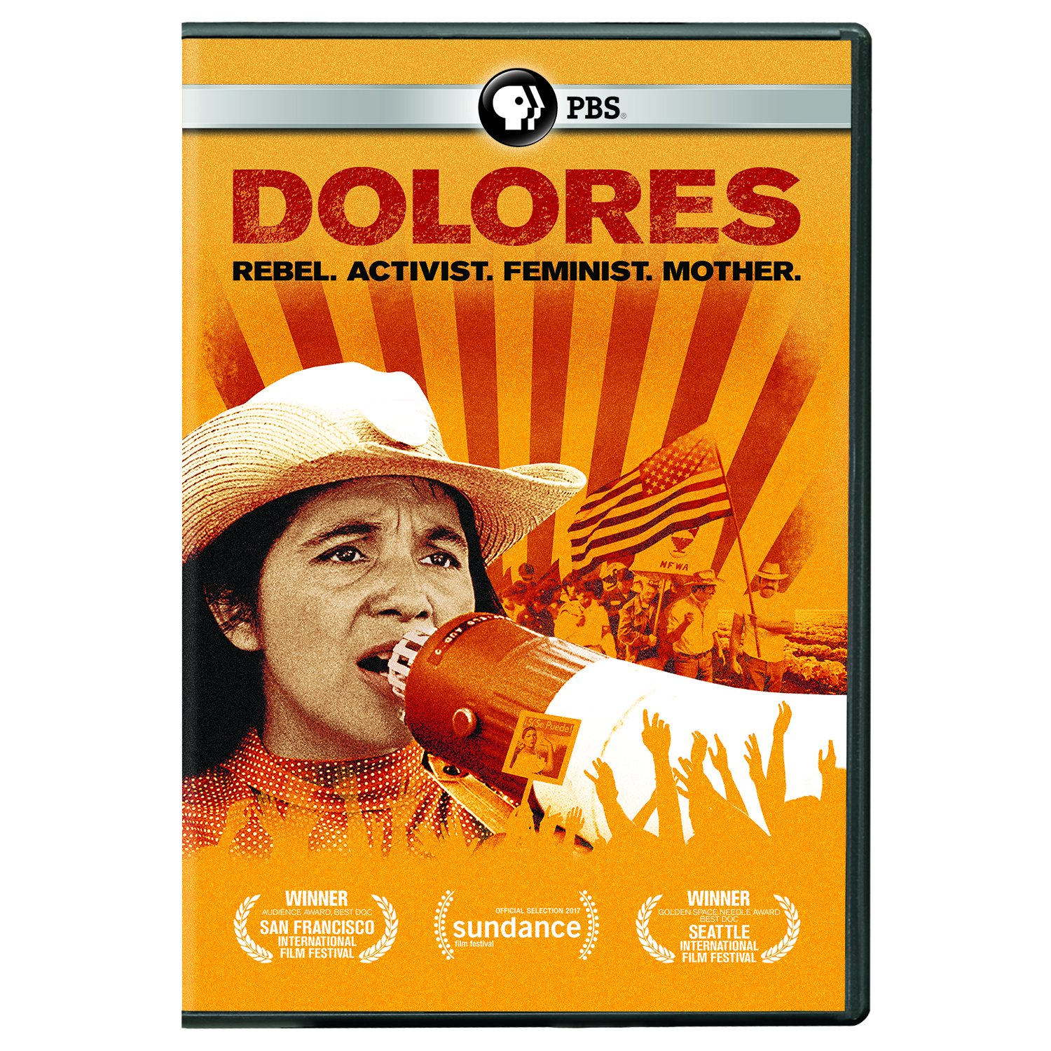 Book Cover: Dolores