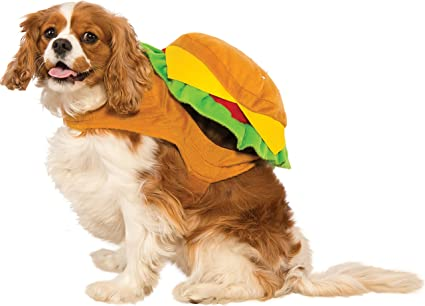 Amazoncom Rubies Hamburger Dog Costume Small Pet Supplies