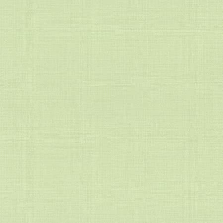 Non Woven Wallpaper Plain Light Green By P S Pure Easy No