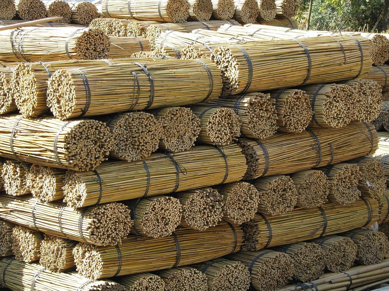 Cañas de jardín de 1, 8 m bambú (50 paquetes), 6 pies, 14-16 mm ...