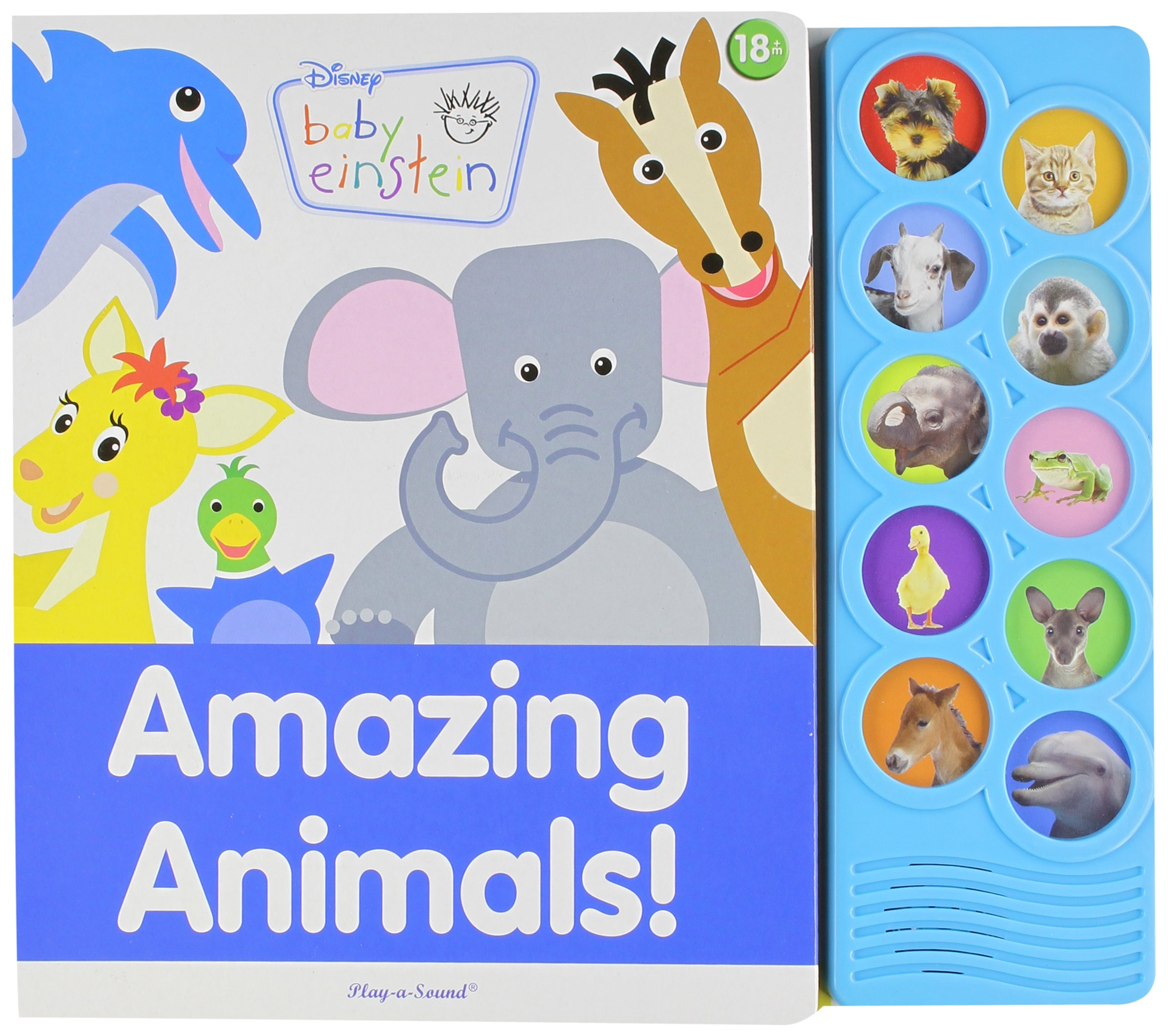 amazing animals play a sound disney baby einstein phoenix intl