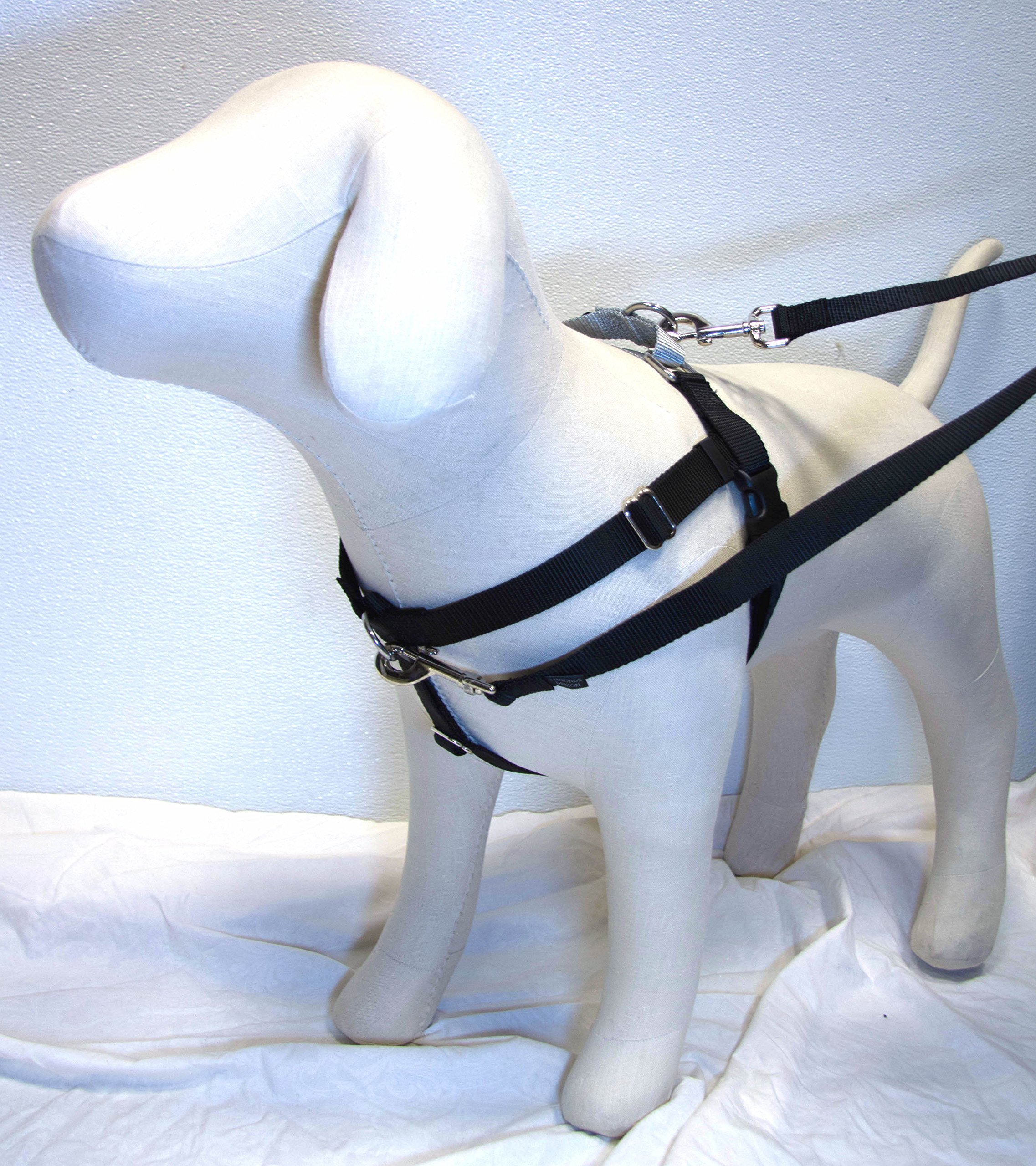 Freedom No-Pull Harness 1'' LG Black and Leash- Direct from Inventor