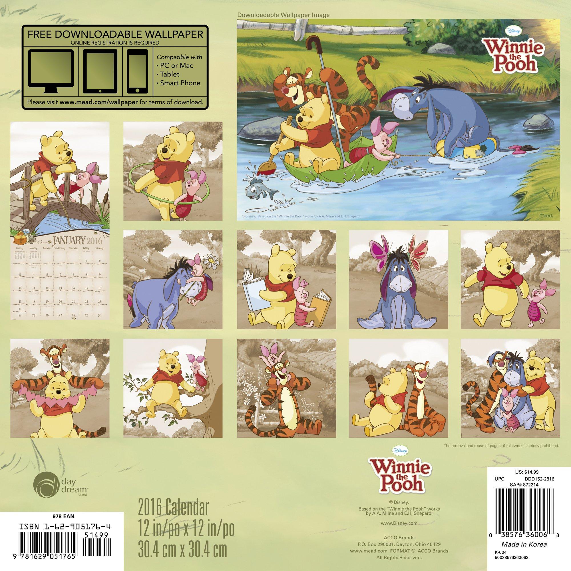 Winnie the Pooh Wall Calendar (2016): Day Dream: 0038576360068 ...
