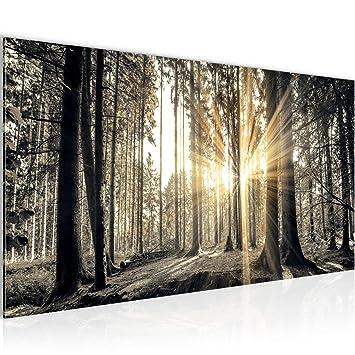 Bilder Wald Landschaft Wandbild 100 x 40 cm Vlies - Leinwand Bild XXL  Format Wandbilder Wohnzimmer Wohnung Deko Kunstdrucke Braun 1 Teilig - Made  IN ...