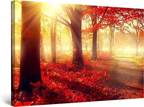 Amazon Com Startonight Canvas Wall Art Daydream Red Morning The Forest Nature Framed 32 X 48 Inches Posters Prints