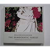 DEMOCRATIC FOREST