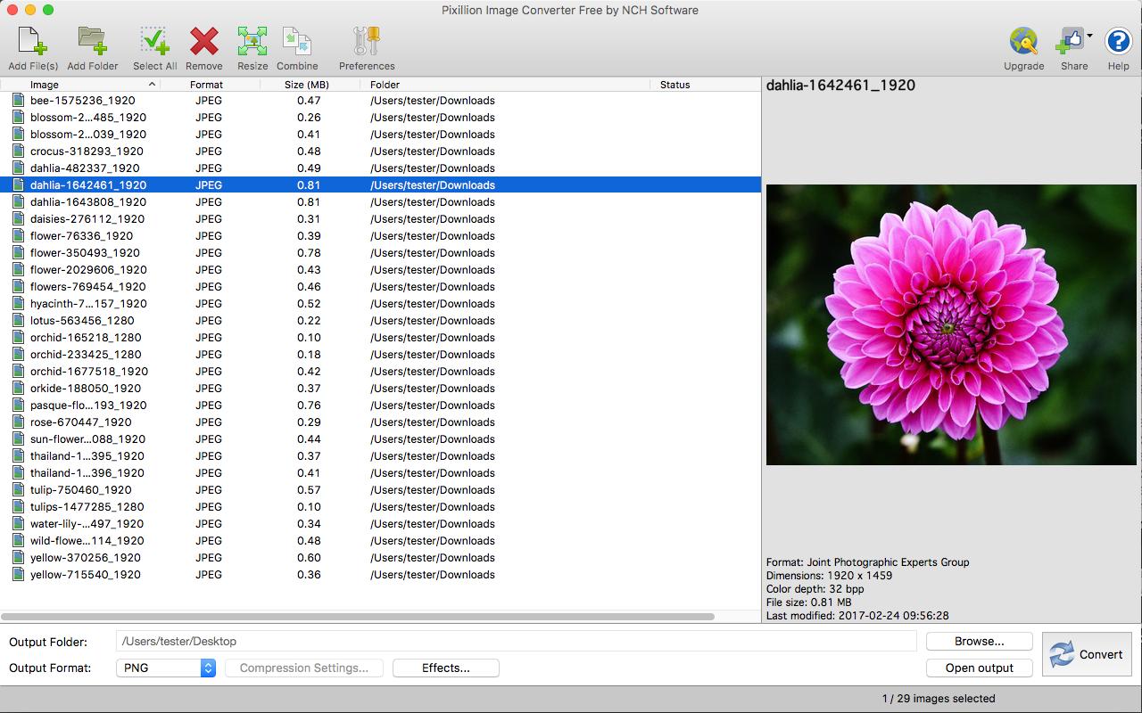 Unisexual flowers pdf converter