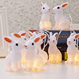 KI Store LED String Lights Warm Easter Bunny String lights Ornaments Battery Operated for Spring Party Themes Yard& Garden Kids Bedroom Living-room Dorm (10 Bunnies)