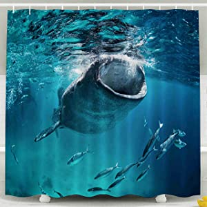 Shorping 78x72 Shower Curtain, Whale Shark Eating at The Surface with Fish Waterproof Decor Bathroom Fabric Polyester Design Set with Hooks