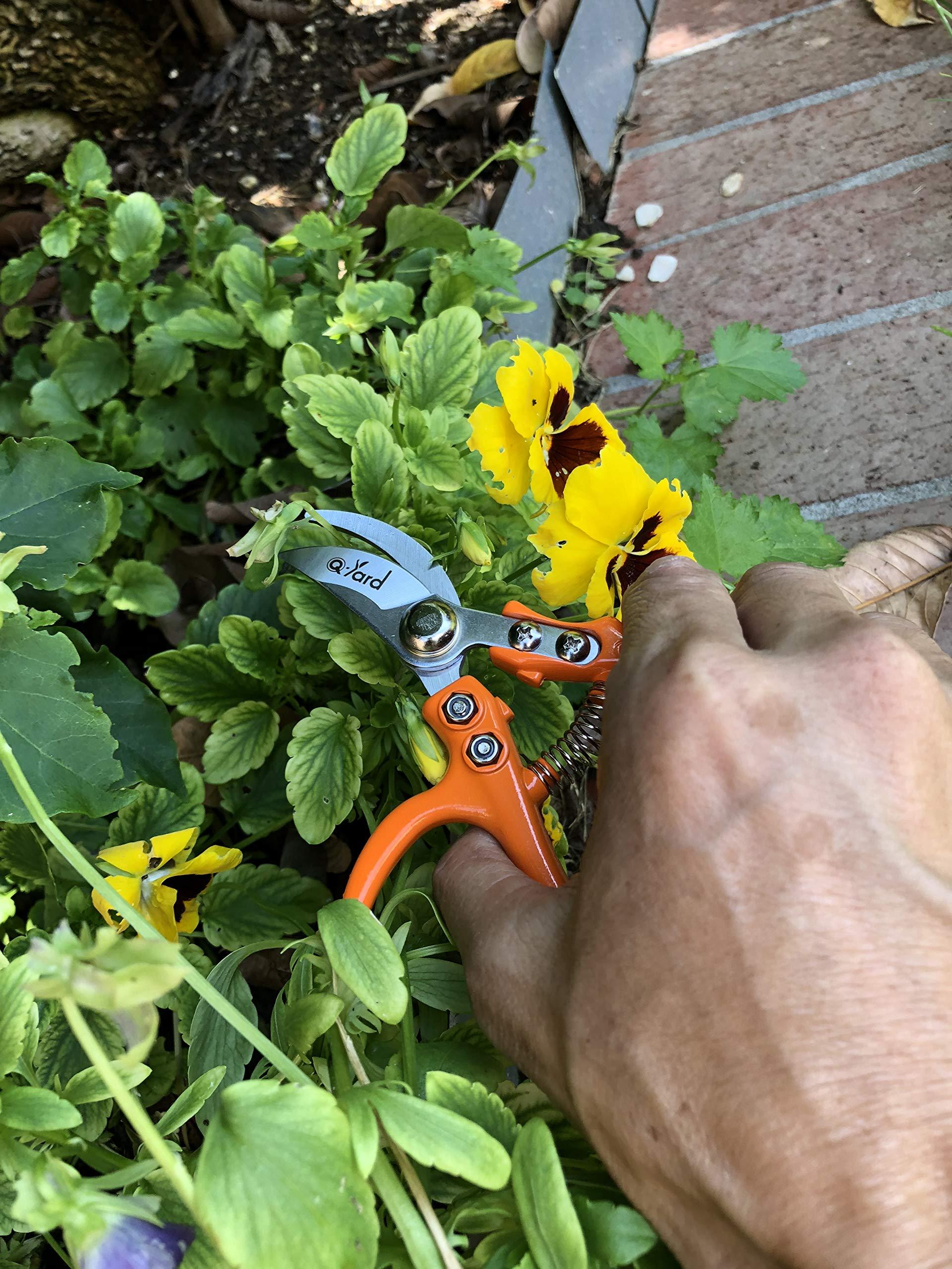 2 - pack Q-yard Pruning Shear, Mini- Extra Sharp Garden Hand Pruners, Easier Cutting, Comfortable Ergonomic, Less Effort - Gardening Scissors for Men & Women by Q-yard