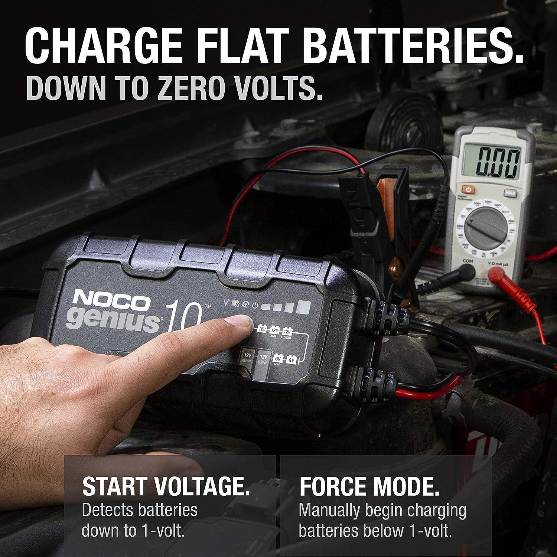 mantenedor y desulfatador de bater/ías de 6 V y 12 V con compensaci/ón de Temperatura Inteligente Completamente autom/ático de 10 amperios NOCO GENIUS10EU Cargador