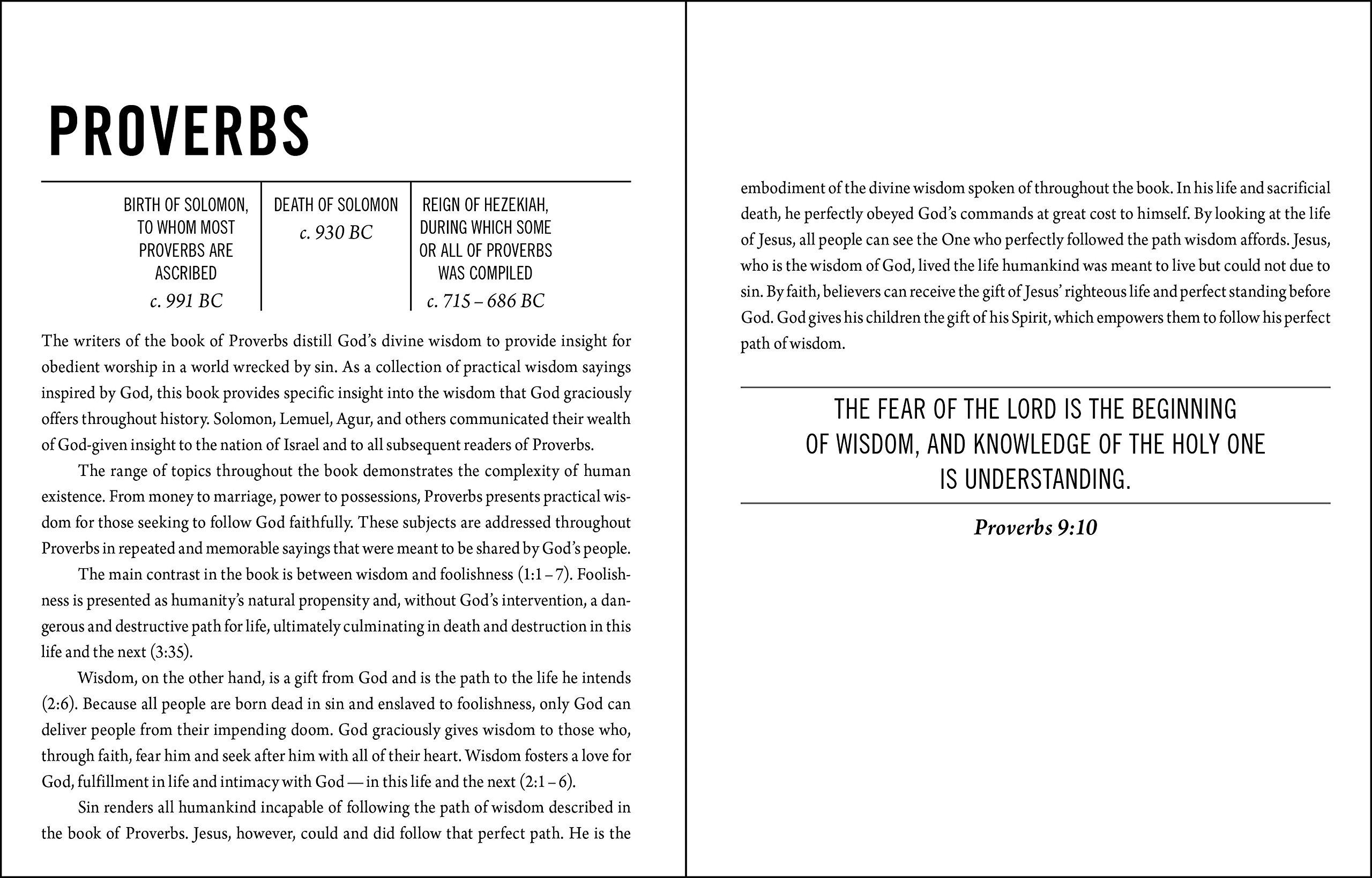 the jesus bible niv edition imitation leather brown passion