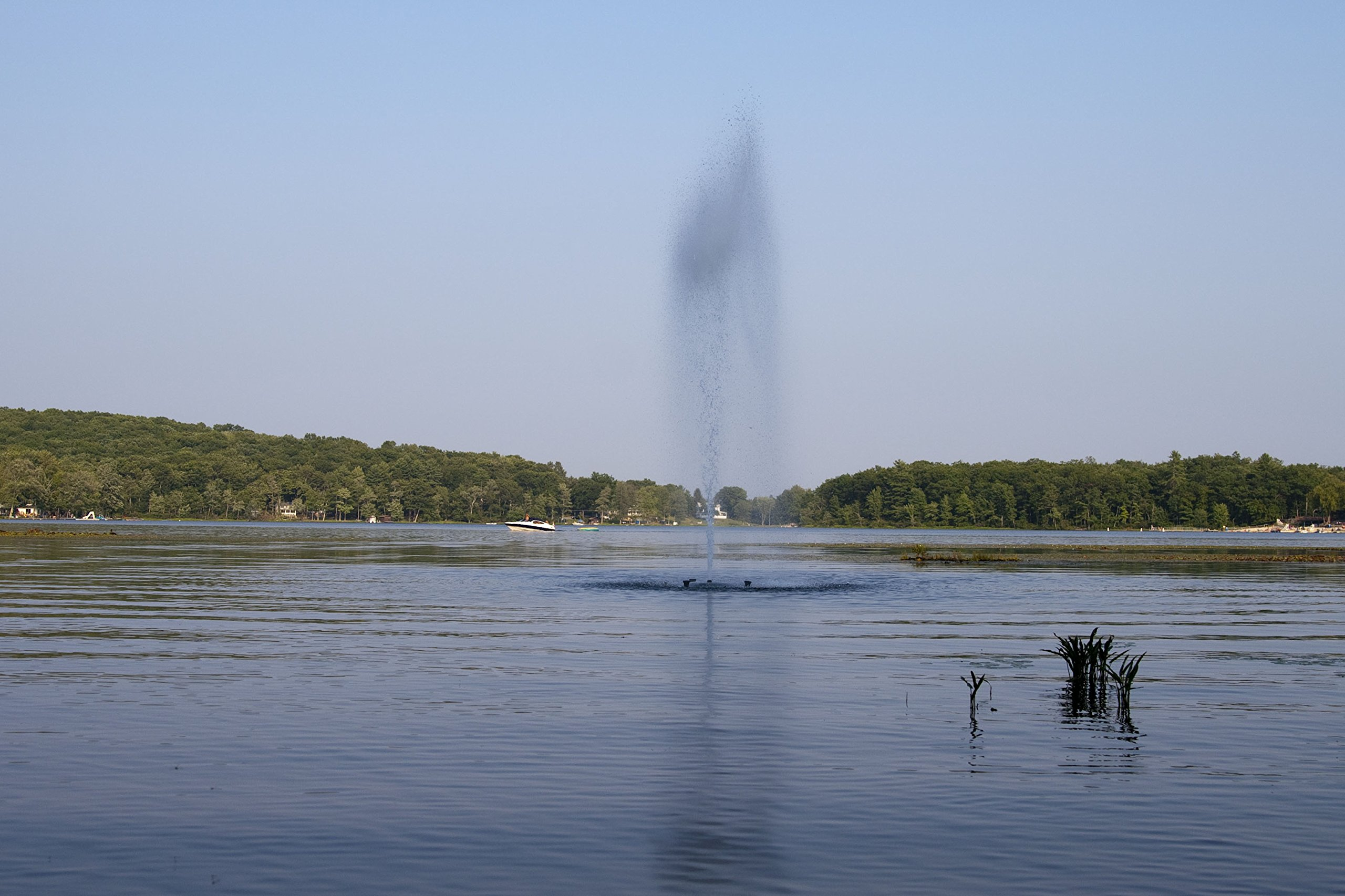 Fawn Lake Fountains 3/4 HP Floating Pond and Lake Fountain