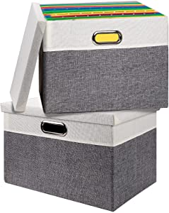 Vextronic File Box Storage Organizer with Lid Set of 2 Collapsible Linen Filing Cabinet & Office Decorative Storage Boxes, Hanging Letter/Legal Folder File Bins for Home Office, Gray