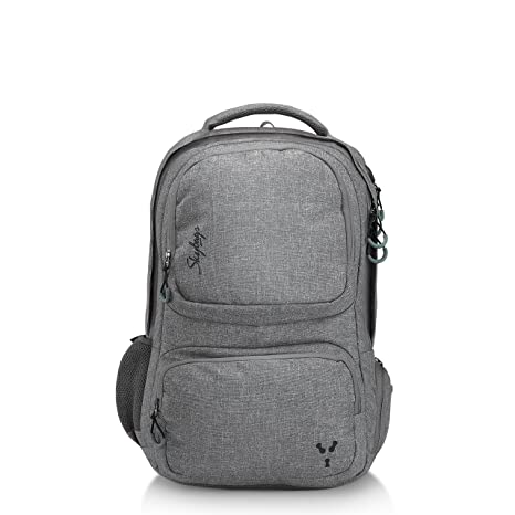 Skybags 34 Ltrs Grey Laptop Backpack (CREW4GRY)  Amazon.in  Bags ... ac81c3e4f40c0